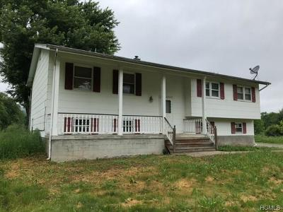 New Paltz Single Family Home For Sale: 217 Springtown Road