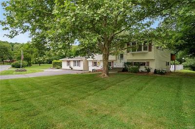 Chester Single Family Home For Sale: 38 Park Drive