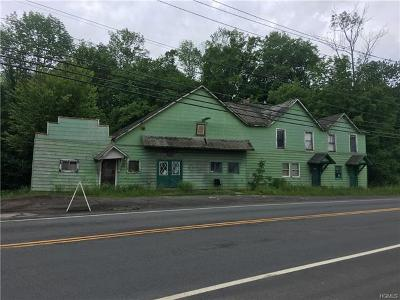 Fallsburg Commercial For Sale: 1125 State Route 52