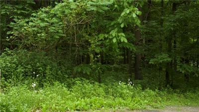 Residential Lots & Land For Sale: 1501 Us Route 209