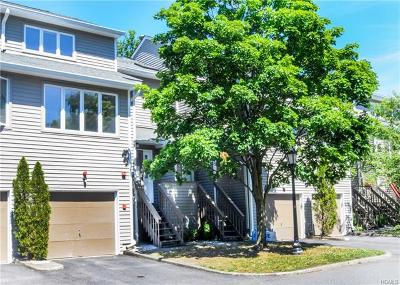 Rockland County Condo/Townhouse For Sale: 17 Village Green