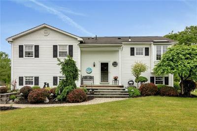 Washingtonville Single Family Home For Sale: 9 Pilgrim Lane