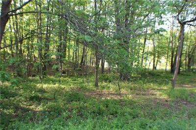 Residential Lots & Land For Sale: 56 Route 209