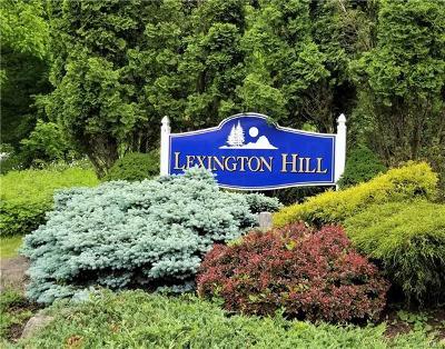 Harriman Condo/Townhouse For Sale: 30 Lexington Hill #5