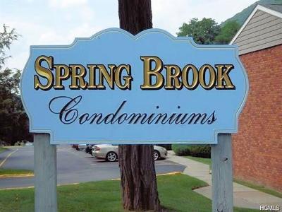 Putnam County Rental For Rent: 50 Fair Street #D8