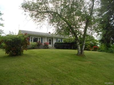 Rock Tavern Single Family Home For Sale: 87 Kings Road