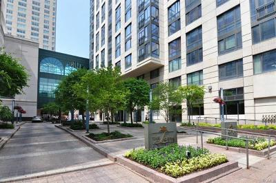 White Plains Condo/Townhouse For Sale: 10 City Place #PH4C