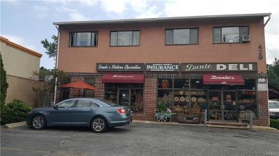 Commercial For Sale: 429 Central Avenue