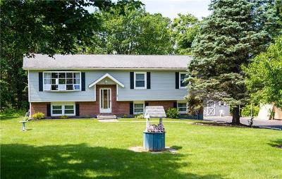 Fishkill Single Family Home For Sale: 9 Magnolia Drive