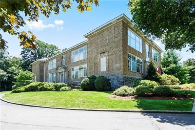 Ardsley Condo/Townhouse For Sale: 520 Ashford Avenue #11