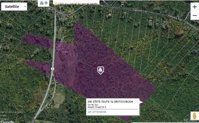 Residential Lots & Land For Sale: 900 State Route 42