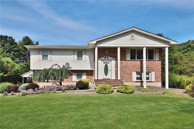 Rockland County Single Family Home For Sale: 8 Christie Drive