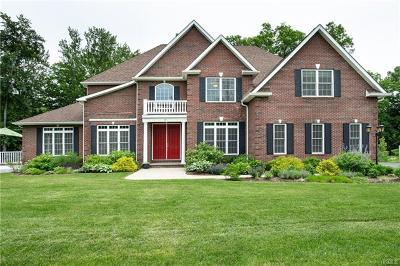 Hopewell Junction Single Family Home For Sale: 15 Lees Way