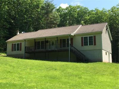 Callicoon, Callicoon Center Single Family Home For Sale: 109 Serenity Drive