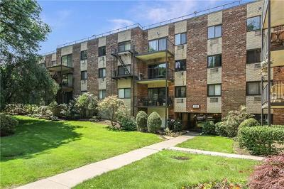 Westchester County Condo/Townhouse For Sale: 111 Dehaven Drive #321