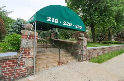 New Rochelle Co-Operative For Sale: 230 Pelham Road #4E