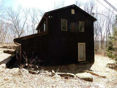 Wassaic Single Family Home For Sale: 3971 Route 22