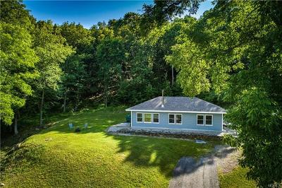 Dover Plains Single Family Home For Sale: 1512 Route 343
