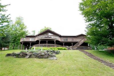 Sullivan County Single Family Home For Sale: 74 Lena Road