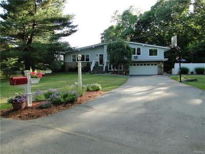 New Windsor Single Family Home For Sale: 9 Birch Drive
