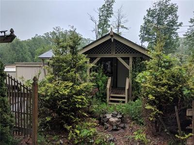 Wurtsboro NY Single Family Home For Sale: $24,900