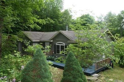 Livingston Manor NY Single Family Home For Sale: $209,000