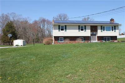 Pine Bush Single Family Home For Sale: 196 State Route 302