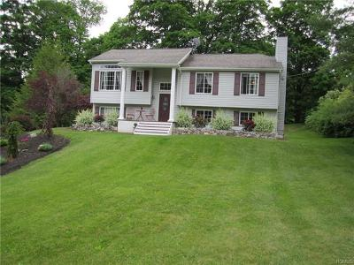 Dutchess County Single Family Home For Sale: 9 Baxter Road