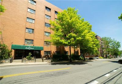 White Plains Condo/Townhouse For Sale: 21 Lake Street #1F