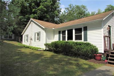 Dover Plains Single Family Home For Sale: 2286 Route 22