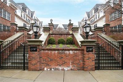 Westchester County Condo/Townhouse For Sale: 225 Stanley Avenue #308