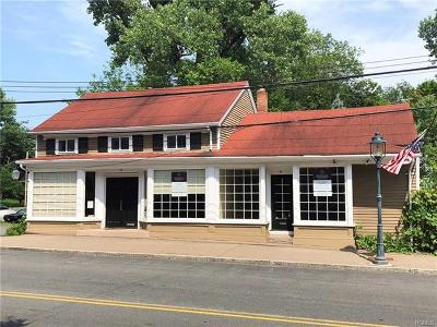 Tappan Commercial For Sale: 99 Main Street