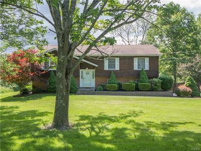 Pine Bush Single Family Home For Sale: 307 Gillespie