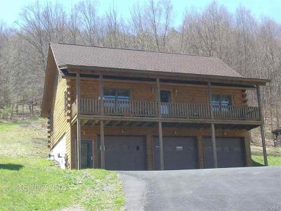 Roscoe NY Single Family Home For Sale: $315,000
