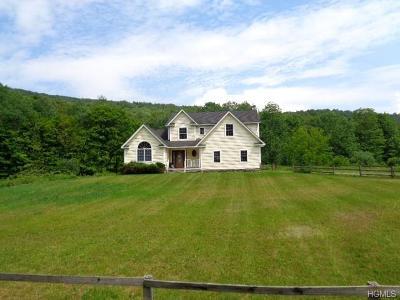 Roscoe NY Single Family Home For Sale: $185,000