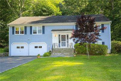 Mount Kisco Single Family Home For Sale: 25 Carol Drive