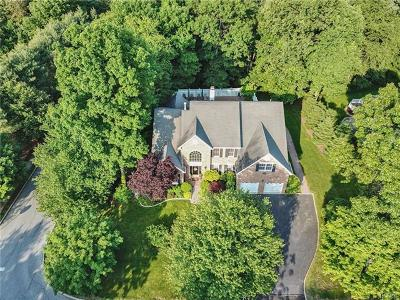 Mount Kisco Single Family Home For Sale: 13 Carlton Drive