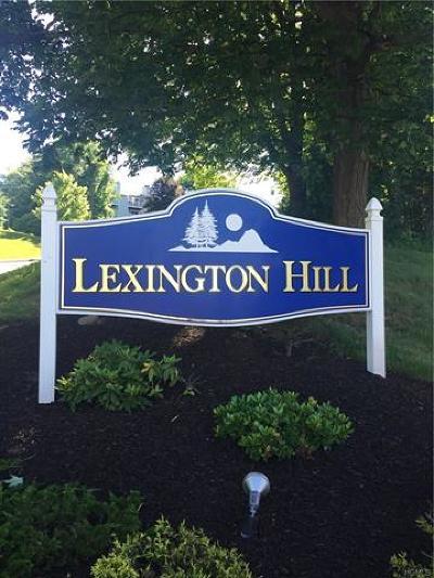 Harriman Condo/Townhouse For Sale: 12 Lexington Hill #3