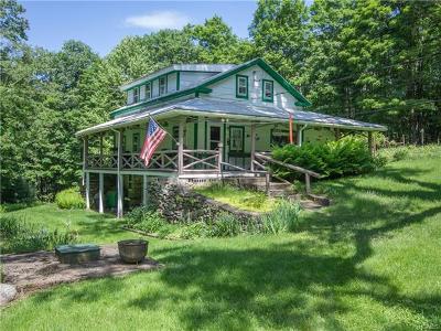 Sullivan County Single Family Home For Sale: 28 Goodwin Road
