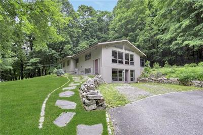 Putnam County Single Family Home For Sale: 10 Durisol Road