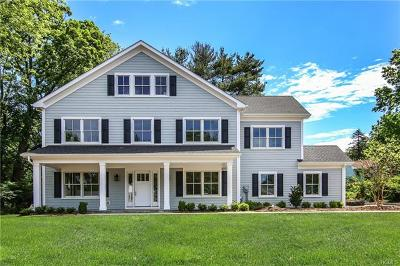 Rye Brook Single Family Home For Sale: 21 Elm Hill Drive