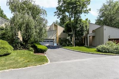 Rye Brook Single Family Home For Sale: 51 Talcott Road