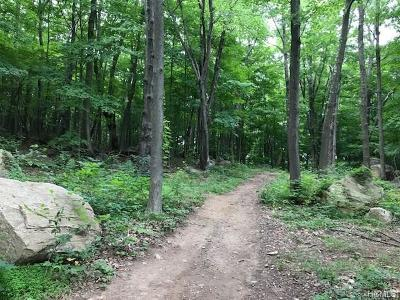 Stormville Residential Lots & Land For Sale: 4 Prout