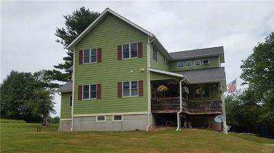 Narrowsburg Single Family Home For Sale: 311 Mohn Road