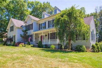 Hopewell Junction Single Family Home For Sale: 162 Creekside Road