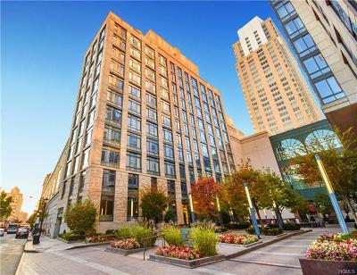 White Plains Condo/Townhouse For Sale: 25 City Place #10C
