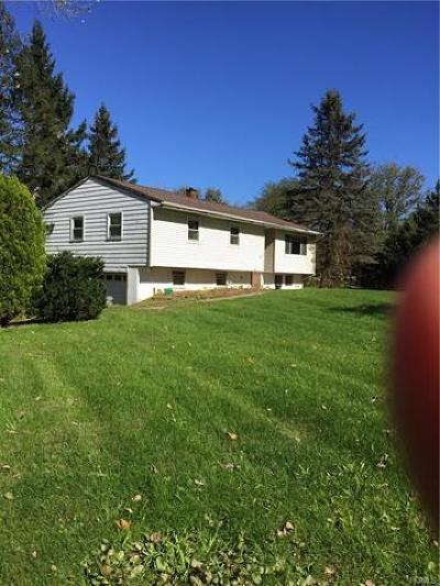 Dover Plains Single Family Home For Sale: 36 Evan Road