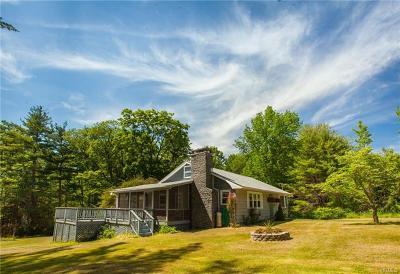 Wurtsboro Single Family Home For Sale: 461 Upper Pine Kill Road