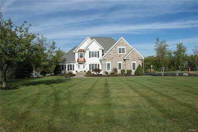 Hopewell Junction Single Family Home For Sale: 50 Winter Green Place