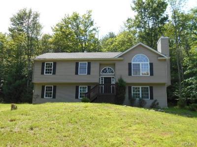 Wurtsboro Single Family Home For Sale: 202 Budd Road